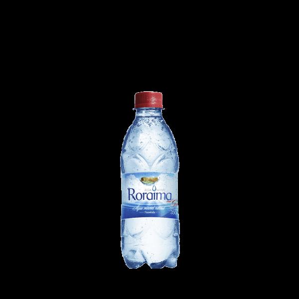 Água Monte Roraima Com gás